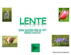 Lente: welk woord zeg ik het eerst/laatst  In deze digibordles zie je drie en later vier afbeeldingen die te maken hebben met de lente. Je noemt de afbeeldigen op en de kinderen moeten raden welk woord jet het eerste zei of het laatste. De eerste serie dia's bestaat uit 3 plaatjes en de laatste serie dia's uit 4 plaatjes. Er is een ingesproken versie bij, zodat de kinderen het later zelfstandig kunnen spelen.  http://leermiddel.digischool.nl/po/leermiddel/0eef73286f7999c70588f9eb31e343f3