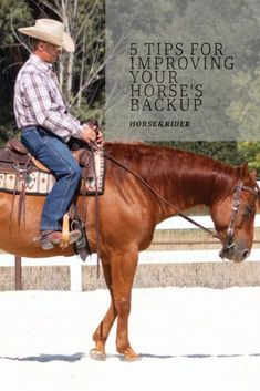 Unhappy with your horse's lazy backup? Activate his hind end to solve this frustrating problem. Equestrian Boots, Equestrian Outfits, Equestrian Style, Equestrian Fashion, Horse Exercises, Horse Training Tips, Horse Tips, Types Of Horses, English Riding