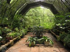 How to Build a Greenhouse   outdoortheme.com