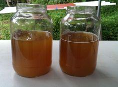 vinegar http://ecocosas.com/agroecologia/usos-del-vinagre-en-el-jardin-y-la-huerta/