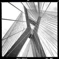 "@neliod's photo: ""Ponte Estaiada in B  #saopaulo #ilivesp #sampa"""