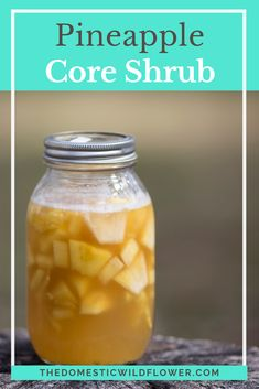 This post will share how to use the part of the pineapple that is so often tossed or composted and thus saves and makes terrific use of it to make a delicious, flavorful shrub. Read on to see how one magic step makes the core the best part of the shrub! Canning Recipes, Gourmet Recipes, Healthy Recipes, Scd Recipes, Canning 101, Shrub Drink, Shrub Recipe, Drinking Vinegar, Sodas