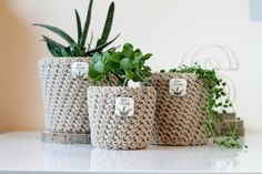 Neutral Plant Pots / Cream Succulent Holder / Crochet Removable Pot Covers / Set of Plastic Free Plant pots / Beige Indoor Houseplant Pots Indoor Plants Clean Air, Indoor Plants Low Light, Indoor Plant Pots, Potted Plants, Cactus Pot, Free Plants, Faux Fur Pom Pom, Etsy Uk, Plant Holders