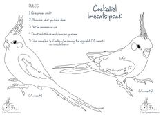 Cockatiel linearts pack by FlightDesigns