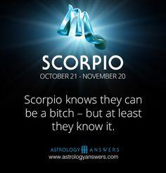 Horoscope Today: Free Daily Horoscopes from Astrology Answers Astrology Scorpio, Scorpio Zodiac Facts, Scorpio Traits, Aries, Zodiac Signs Scorpio, Scorpio Quotes, My Zodiac Sign, Zodiac Quotes, Scorpio Funny