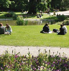 """Jardin de l'Horticulture, labellisé """"Jardin remarquable"""".  Créé en 1873, ce parc paysager est traversé par le Cubry et présente une roseraie rénovée en 2002 ainsi qu'un arboretum de qualité."""