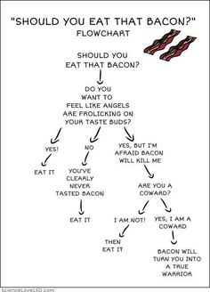 """""""Should you eat that bacon?"""" .....YES! Bacon Day, Make Me Smile, Tumblr Funny, Funny Quotes, Twitter, Calligraphy, Sayings, Comics, Polyvore"""
