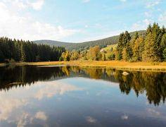 Erholung pur im Schwarzwald! #Badeurlaub #BlackForest #Wandern #Natur ©hamedb89 - Fotolia