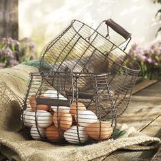 Ramassage d œufs