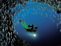 PADI-or-SSI-Open-Water-SCUBA-Diving-Phuket