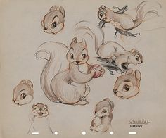 Disney Squirrel Characters | ... Squirrel & Chipmunk were a couple of buddies designed to be featured