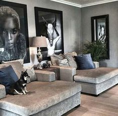 Love these chairs.. Pooch does too #luxurylivingroom #chairs #luxurylivingroom #pooch #these