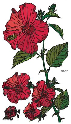 fc4bde1aeb885 Amazon.com : Supperb Mix Flower Temporary Tattoos Ii / 6-pack Floral Tattoo  : Beauty