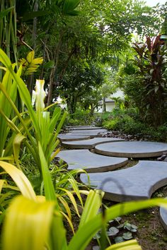 Paved trails make our guests' strolls in Villa Maly's lush gardens easier. #luangprabang #tropicalgarden www.villa-maly.com