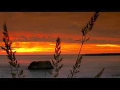 Sufi Devotional Song - Sufi Song - Ya Allah Tere Qurban - Jannat from Zikr - Call of a Sufi - YouTube