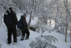 Top Ten Snowshoeing Parks & Trails in New and New Jersey Photo:Balsam Mountain, Catskill High Peak. Photo by Daniel Chazin.