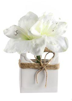 Amaryllis fleurs blanches avec vase déco sur Jardindeco