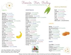 Solid Food Chart by Types of Foods | Apples, Broccoli and more - Solid Food Chart for Babies Grouped by Food Types including Fruits, Vegetables, Grains, Dairy and Meat