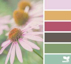 #цветовые сочетания
