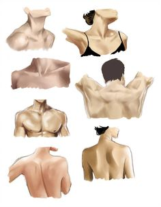 Neck and Shoulders Study by CrAzY-lUnAr-GiRl on DeviantArt – Drawing Techniques Girl Anatomy, Human Anatomy Art, Anatomy Drawing, Face Anatomy, Neck Drawing, Body Drawing, Female Drawing, Human Drawing, Dancing Drawings