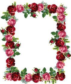 FREE digital vintage rose frame and border (png with transparent background)