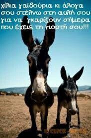 Goats, Birthday, Quotes, Animals, Facebook, Quotations, Birthdays, Animales, Animaux