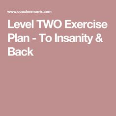 Level TWO Exercise Plan - To Insanity & Back