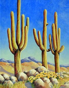 saguaros cactus in the desert , original painting fine art acrylic on deluxe canvas 20 x 16 Desert Art, Desert Trees, Desert Oasis, Desert Life, Drawings Pinterest, Cactus Pictures, Cactus Art, Cactus Painting, Southwestern Art