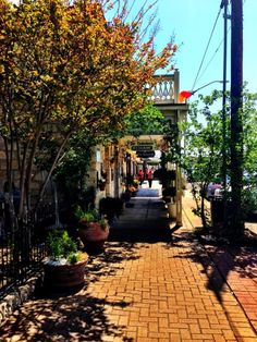 Old-time German Town: Fredericksburg, Texas, one of my fav places and maybe someday live. Love the hill country.