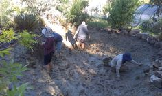 lining pond with clay #catcheverydrop #waterharvesting
