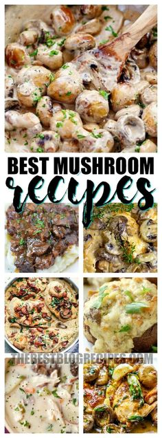 The Best Mushroom Recipes on this list are so creamy, delicious and go GREAT as either a main or side dish -- depending on which recipe you choose! Side Dish Recipes, Vegetable Recipes, Vegetarian Recipes, Side Dishes, Dinner Recipes, Cooking Recipes, Healthy Recipes, Bacon Recipes, Dessert Recipes