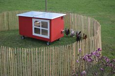Shed, Outdoor Structures, Gardening, Chicken, Small Chicken Coops, Pigeon Loft, Building A Chicken Run, Windows And Doors, Cottage House