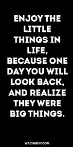 #inspiration #quote / ENJOY THE LITTLE THINGS IN LIFE,  BECAUSE ONE DAY YOU WILL LOOK BACK, AND REALIZE THEY WERE BIG THINGS.