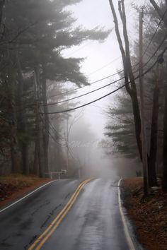 Solitude Portriat Print Country Road Road Misty by DeMintGallery