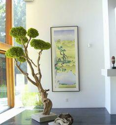 Plants are a sign of life, vitality and freshness. Moss Garden, Garden Art, Garden Design, Moss Wall Art, Moss Art, House Plants Decor, Plant Decor, Vertical Succulent Gardens, Branch Decor