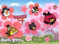 Image detail for -Angry Birds Seasons Cherry Blossom 02