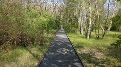 Schöneberger-Südgelände-Park