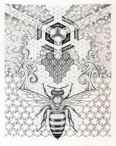 •Noel Badges Pugh•  • Illustration For Science & Other Art •