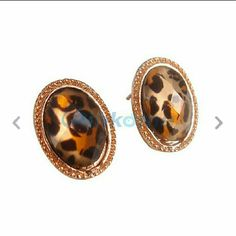 Cheetah earrings Super cute cheetah earrings deff. A must have for your collection. Jewelry Earrings
