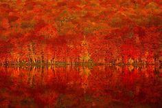 鏡張りの様はまるでウユニ塩湖!青森県「蔦七沼」の紅葉が美しすぎる