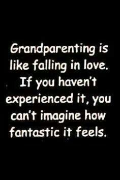 being Nonna & Grandpa is so sweet - just thinking about our grandkids makes us smile. Quotes About Grandchildren, Grandkids Quotes, San Roman, Grandmothers Love, Grandma Quotes, Sister Quotes, Daughter Quotes, Father Daughter, Thing 1