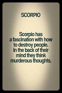 oh my god stop exposing me! Scorpio Humor, Scorpio Funny, Scorpio Zodiac Facts, Scorpio Traits, Scorpio Sign, Scorpio Quotes, Libra Horoscope, Zodiac Quotes, Scorpio Season