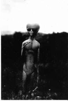 Venus Aversa, photo of the common earth conception of a 'gray', extraterrestrial. Les Aliens, Aliens And Ufos, Ancient Aliens, Ancient History, Ufo Footage, Creepy, Scary, Alien Photos, Secret Space Program