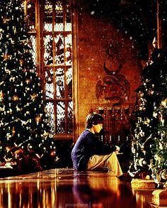 Merry Christmas Happy Holidays Harry Potter Gif