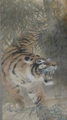 "ANTIQUE JAPANESE WATERCOLOR SCROLL PAINTING ""A TIGER IN BAMBOO BUSHES""SIGN &SEAL"