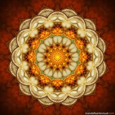 Mandala Hindu or Buddhist symbol of the universe had to look this up, maybe save ya the effort. Knew the word, not the meaning