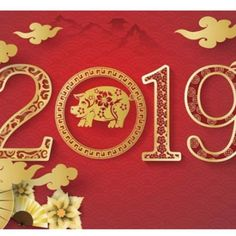 High quality designed cards in 1 package for the year of the pig. Chinese New Year Gifts, Chinese New Year Greeting, New Year Greeting Cards, New Year Greetings, Year Of The Pig, Design