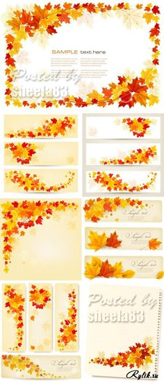 Кленовые листья - осенние векторные фоны и баннеры в векторе. Autumn Leaves Banners Vector