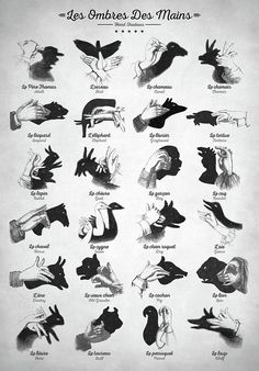 How to make shadow animals with your hands. - Humor Photo - Humor images - How to make shadow animals with your hands. The post How to make shadow animals with your hands. appeared first on Gag Dad. Shadow Art, Shadow Play, Antique Nursery, Vintage Nursery, Vintage Decor, Shadow Puppets With Hands, Hand Shadows, Sign Language Alphabet, Learn Sign Language