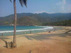 Playa grande, Choroni. Estado Aragua #Venezuela